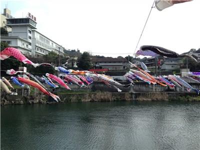 【どっち!?】日本で最初に渓流に鯉のぼりを流し始めたのは熊本県or高知県
