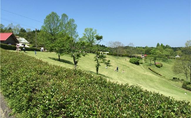 20150506_dongurimura_saga_01