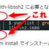 【WordPress】SyntaxHighlighter Evolvedで上下に余白を入れる方法
